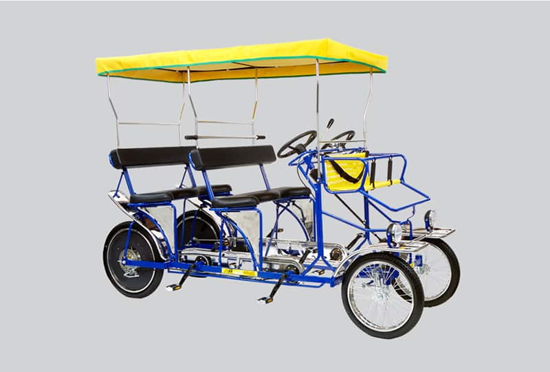 Double Surrey Bicycle Quadricycle